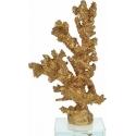 Διακοσμητικό χρυσό κοράλι σε γυάλινη βάση